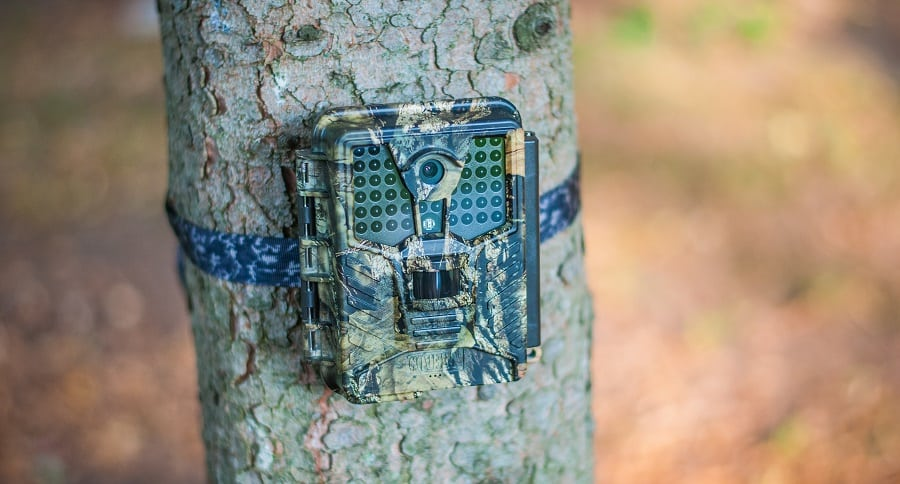 COVERT SCOUTING CAMERA REVIEW: THE ICE CAM