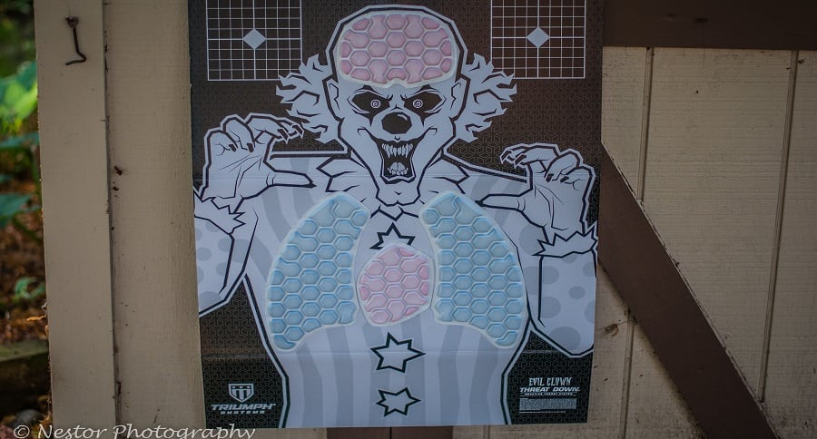 RANGE TIME WITH THE NEW TRIUMPH SYSTEMS REACTIVE TARGETS