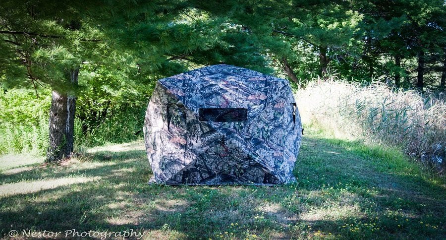 EXAMINING THE AGE OLD QUESTION: TREESTAND VS. GROUND BLIND