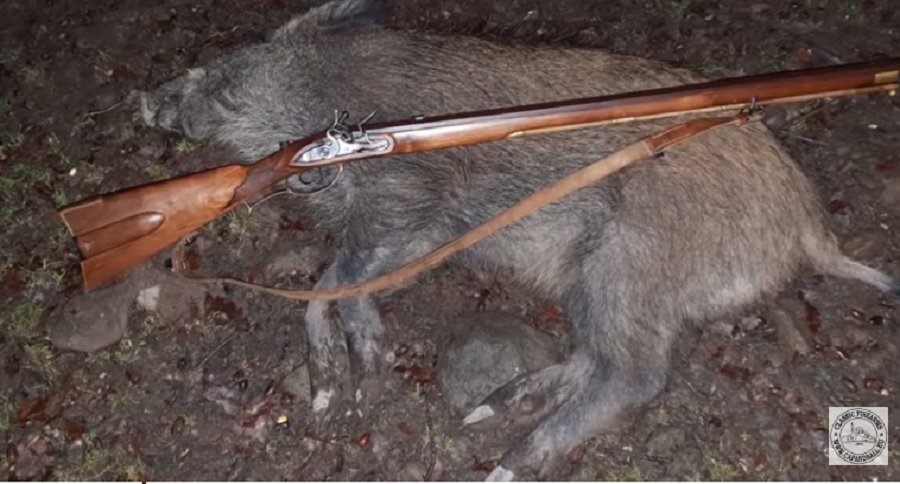 OLD SCHOOL FLINTLOCK BOAR HUNT WITH YOUTUBER CAP & BALL