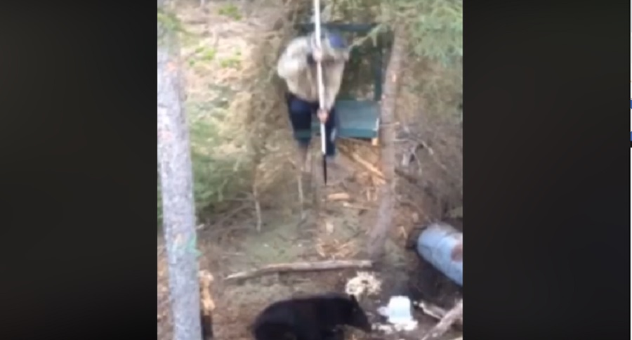 HOLD MY BEER WHILE I SPEAR A BEAR (EPIC FAIL VIDEO)