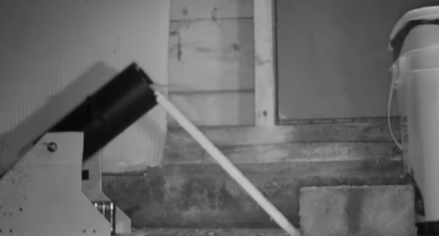 SEEN IT ALL? CANNON MOUSE TRAP (VIDEO)