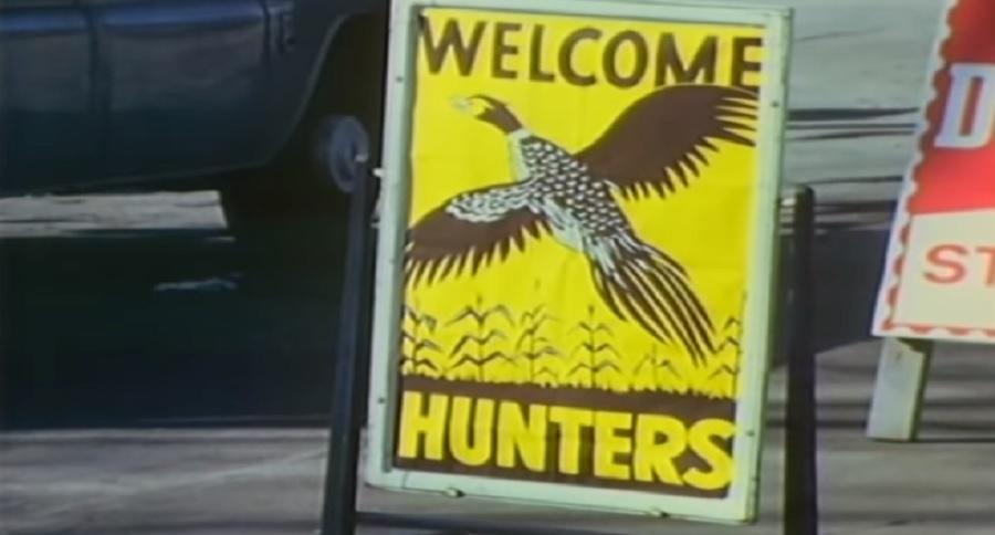 PHEASANT HUNTING SOUTH DAKOTA: THE EARLY 1960'S