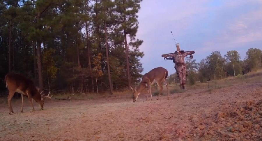 SCARECROW BUCK HUNTING? YES IT'S REAL (VIDEO)